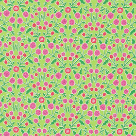 Sanderson Candytuft Brights-Multi DPAV224635