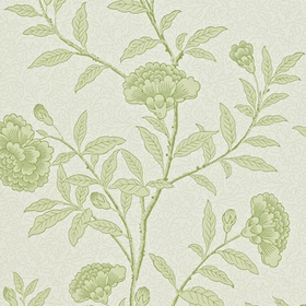 Sanderson Chinese Peony Pale Olive DRCH212134