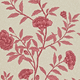 Sanderson Chinese Peony Red Orchid DRCH212137