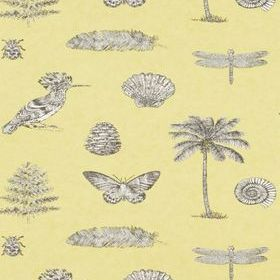 Sanderson Cocos Yellow-Charcoal DVOY213382
