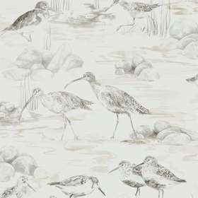 Sanderson Estuary Birds Chalk-Sepia 216493
