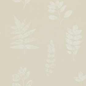 Sanderson Laurel Neutral-Ivory DMAD212852