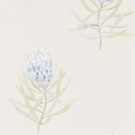 Sanderson Protea Flower China Blue-Canvas 216327