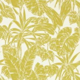 Scion Parlour Palm Citrus 112022