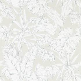 Scion Parlour Palm Raffia 112026
