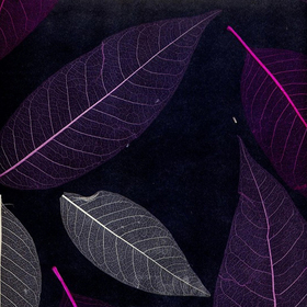 Natural Furniture Company Ltd Black & Cerise Leaf