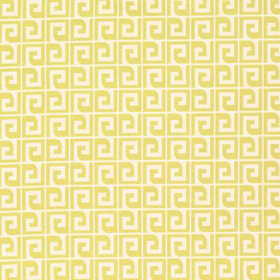 Thibaut Anafi Yellow F98692