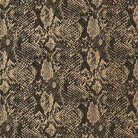 Thibaut Boa Black-Metallic Gold T75168