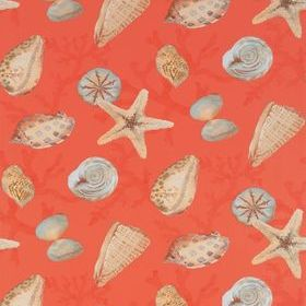 Thibaut Clearwater Coral T5761
