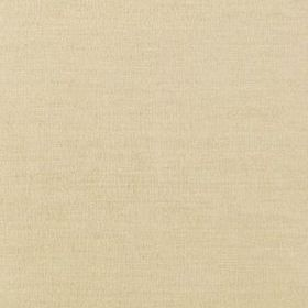 Thibaut Coastal Sisal Wheat T14111