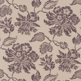 Thibaut Helena Brown on Natural F94104