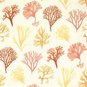 Thibaut Kelp Red T6741
