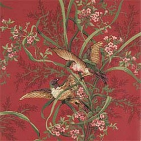 Thibaut Lafayette Red T6908