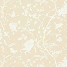 Thibaut Liang Beige T36177