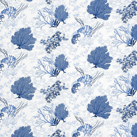 Thibaut Molokini Blue on White F95733