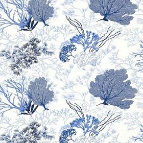 Thibaut Molokini Blue on White T5733
