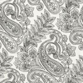 Thibaut Norwich Paisley Black and White T9287