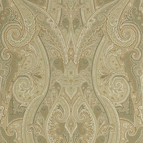 Thibaut Patani Sage and Neutral T1032