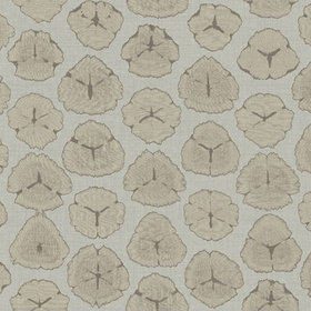 Today Interiors Sand Dollar AH41300