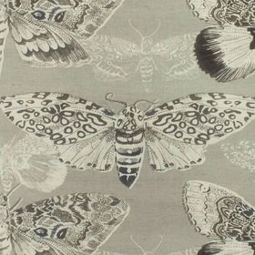 Voyage Nocturnal Sepia Fabric