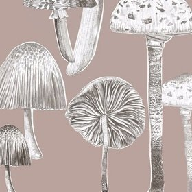 Voyage Toadstools Taupe Fabric
