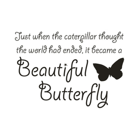 Wall Word Designs Beautiful Butterfly 1062