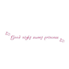 Wall Word Designs goodnight princess 1006