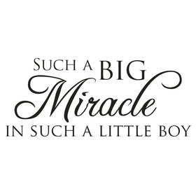 Wall Word Designs Miracle Boy 1092