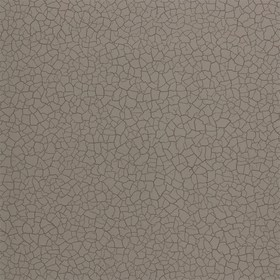 Zoffany Cracked Earth Gobi 312527