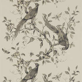 Zoffany Darnley Dove 312849