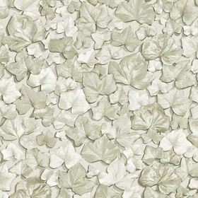Zoffany Ivy Leaf Chalk ZQUA310979