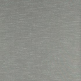 Zoffany Rushes Silver Birch 312493