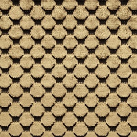 Zoffany Tespi Spot Carbon-Old Gold ZTSV332166