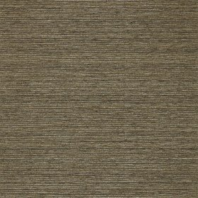 Zoffany Wild Silk Graphite 310284