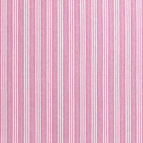 Anna French Reed Stripe Fuchsia AW9849