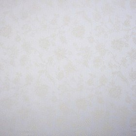 Casadeco Indienne Voile Blanc CHT22880107