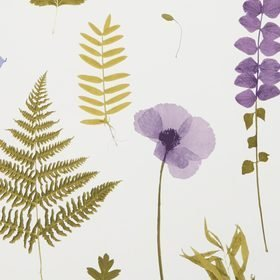 Clarke & Clarke Herbarium Heather W0091-03
