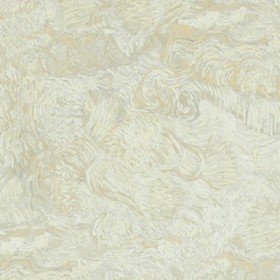 BN Wallcoverings For Tektura Van Gogh VAN17171