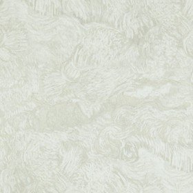 BN Wallcoverings For Tektura Van Gogh VAN17172